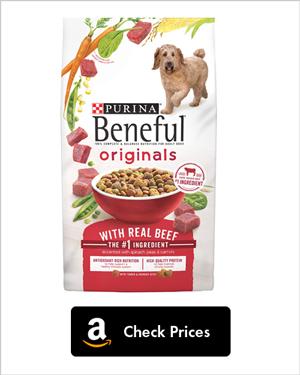 Best Dog Food For Labradoodles Labradoodles Dogs